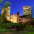 NYC Central Park at night - Stock Photo