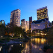 NYC Central Park at dusk — Stock Photo