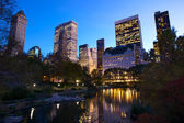 夕暮れ時にニューヨーク セントラル ・ パーク — ストック写真