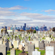 Calvary Cemetery — Stock Photo