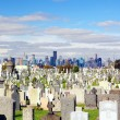Calvary Cemetery - Stock Photo