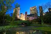 центральный парк нью-йорка в ночное время — Стоковое фото