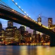 Manhattan panorama — Stock Photo #24574199