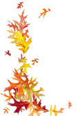 Flying Autumn Leaves — Stock Photo