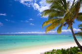 Beautiful tropical beach — Stock Photo