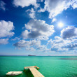 Tropical sea — Stock Photo #40310889