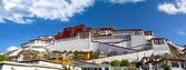 Potala palace panorama — Stock Photo