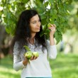 The girl breaks apples — Stock Photo