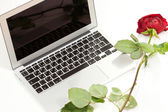 Silver laptop and red rose — Stock Photo