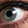 Stock Photo: Female eye