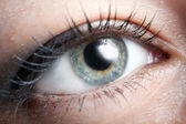 Beautiful eye close-u — Stock Photo