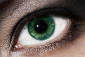 Beautiful eye close-up — Stockfoto