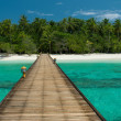 Jetty to a beautiful untouched beach — Stock Photo