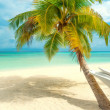 Tropical beach on the maldives — Stock Photo
