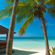 Untouched tropical beach on the maldives — Stock Photo