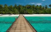 Brygga till en vacker orörd strand — Stockfoto