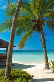 Sommaren på stranden — Stockfoto