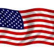 USA Flag — Stock Photo #26141427