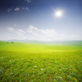 Green field with white clouds — Stock Photo