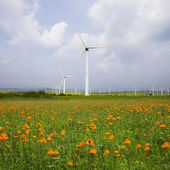 Wind turbine on the green grass over the blue clouded sky — Stock Photo