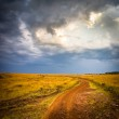 Road in field and stormy clouds — Stock Photo #16173523