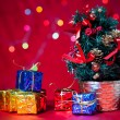 Christmas tree and gift — Stock Photo #16176205