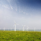 Wind turbines on the green grass over the blue clouded sky — Stock Photo