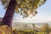 Landschap van de natuur — Stockfoto