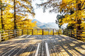 Landscape with wooden board — Stockfoto