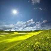 Paisagem de verão linda — Fotografia Stock