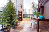 Stylish balcony with plants  — Photo