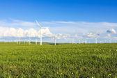 Wind turbines farm — Stock Photo