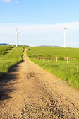 Turbin wiatrowych — Zdjęcie stockowe
