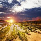Landscape with sunset — Stock Photo