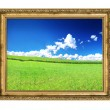 Golden frame and blissful filed view - Stock Photo
