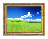 Golden frame and blissful filed view — Stock Photo