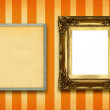 Two frames — Stock Photo #2249878