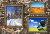 Wooden frames with beautiful landscapes — Stock Photo