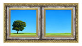 Diptych with landscape — Stock Photo