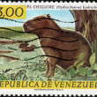 Stamp El Chiguire — Stock Photo