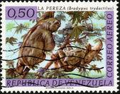 Stamp La Pereza — Stock Photo