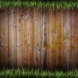 Frame of grass — Stock Photo