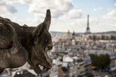 Chimera on Notre Dame of Paris — Stock Photo
