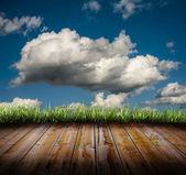 çim ve bulutlar — Stok fotoğraf