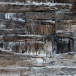 Grunge wood — Stock Photo #23273686