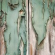 Постер, плакат: Grunge painted wood