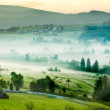 Scenic misty morning in the mountains landscape — Stock Photo