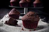 Sweet chocolate muffin — Stock Photo