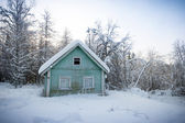 Wooden house in snow-covered Russian wood — Stock Photo