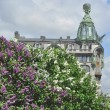Lilac against the House of Books , Saint-Petersburg. — Stock Photo #26440555